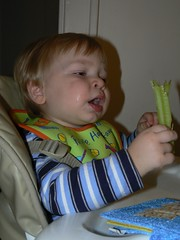 Little guy trying celery
