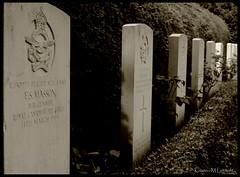 To them we owe our freedom (II) (Kirsten M Lentoft) Tags: graveyard sepia copenhagen denmark memorial canadian ww2 soldiers tombstones bispebjerg allied kirstenmlentoft