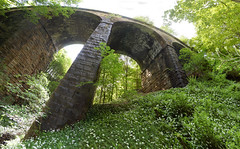 Lobb Ghyll Viaduct (tj.blackwell) Tags: old bridge summer abandoned overgrown stone forest train woodland geotagged countryside yorkshire masonry 1800s railway steam line viaduct route disused derelict ilkley dales a59 embsay ghyll addingham lob westriding boltonbridge b6160 lobbwood lobbghyll geo:lat=53967541 geo:lon=189619