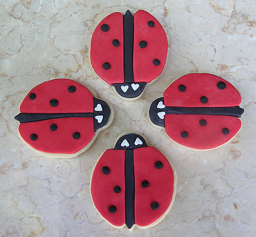 Ladybug Go-To-Meeting