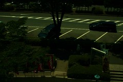 町田樹 画像