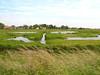 polder e canali