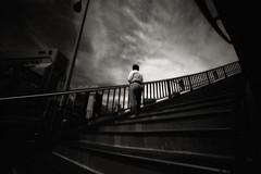 À la verticale de l'été :III (TommyOshima) Tags: leica blackandwhite film monochrome ir voigtlander f45 infrared rodinal 15mm 125 m7 superwideheliarii àlaverticaledelété