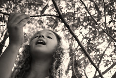 (Megan Caros) Tags: camping trees light portrait plants sunlight smile sepia kids angle bokeh branches innocent insects tessa excitement curiosity mgmt whimsial