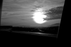Ready to fly (O The temple of \\JazzybrotherS// B&W O) Tags: bw sun dark soleil fly photo image picture pic nb sombre voler