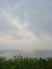DSCF4489 (alfredcky) Tags:  amamioshima