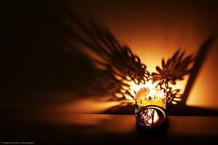 Flora (cacho_please) Tags: japan canon flora candle shadows pcc 450d rebelxsi kissx2 photographersclubofcebu teambati garbongbisayainternationalphotographersclub