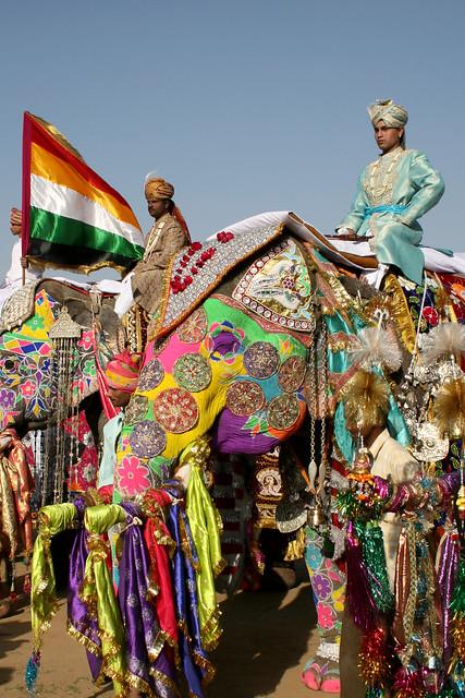 Elephant Festival