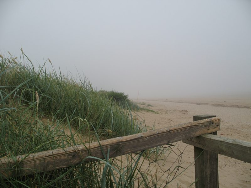 Titchwell in the fog