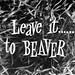 Slide - Leave it to Beaver