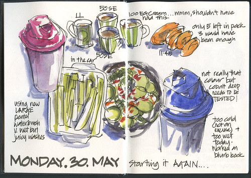 110530 Food Diary - start again