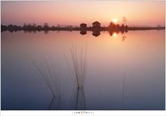 Een zonsopkomst (5D322955) (nandOOnline) Tags: water nederland natuur zon ven heide ochtend landschap strabrechtseheide reflectie zonsopkomst heeze ochtendrood nbrabant pijpestrootje scheidingsven