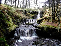 Nant Bwrefwr (John the Neath) Tags: trees winter snow water forest waterfall rocks stream reservoir splash brecon beacons talybont ultimateshot