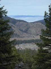 Mt. Pinos