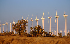 Windmill Generators 00.11.00.14 (Kurt Preissler) Tags: california film windmill energy power desert wind earth environmental windmills images generator generators impact scanned friendly electricity environment slides sustainable renewable ecological turbines concerns ecofriendly canoneos3 impacts turnbines kurtpreissler preisslermediaservices fujivelvia50slidefilm