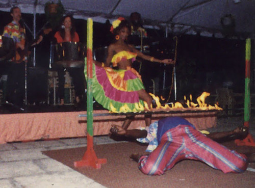 Caribbean Party Tips Theme Parties N More: Ideas For Themed Dinner Party, Food, Games, Decorations