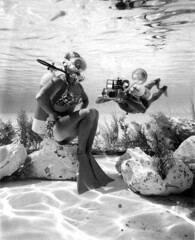 Diver and photographer at Cypress Gardens: Winter Haven, Florida (State Library and Archives of Florida) Tags: divers underwater florida photographers cameras springs cypressgardens underwaterphotography winterhaven polkcounty statelibraryandarchivesofflorida commons:event=commonground2009 floridamemory:slideshow=october2009