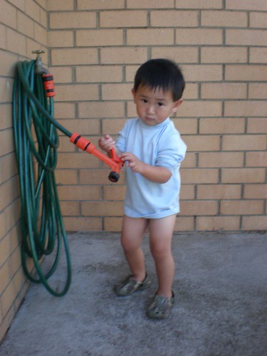 Inspecting the garden hose