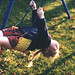 Hayley on swing