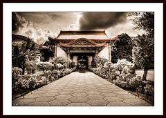 Kek Lok Si, Penang (Thru-My-Lens) Tags: old flowers bw sun heritage clouds blackwhite foliage malaysia historical penang 2009 hdr taoism kekloksi airitam supershot 5xp templeofsupremebliss dragondaggerphoto