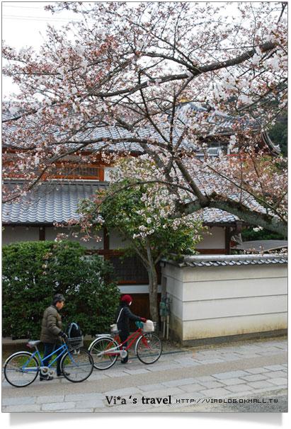 【京都春櫻旅】京都旅遊景點必訪~京都清水寺之美京都清水寺13