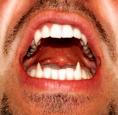 B+ (brilliantdandy) Tags: man sexy male mouth vampire teeth brilliant bocca dandy denti brilliantdandy