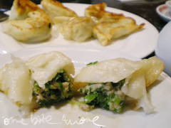 pan fried minced dumplings