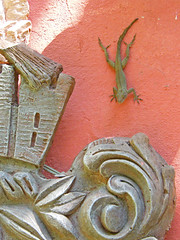 Wall Art!! (njk1951) Tags: gecko wallcreature creatureart geckofriends geckoandstucco holidayinpuertorico islandcreatures