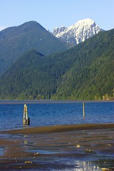 Pitt Lake and mountains (Write Pics) Tags: lake pittlake goldenears pittmeadows mapleridgeandpittmeadows