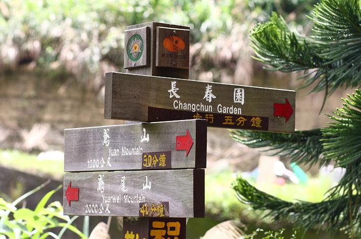 三峽賞桐鳶山步道、銅鐘50