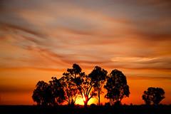 Sunset Aussie Style