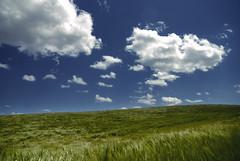 Escritorio (... lo sé...) (oo Felix oo) Tags: windows sky verde azul clouds landscape nikon paisaje cielo nubes d80 felmar calvijo