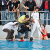 0905202299 (Kostas Kolokythas Photography) Tags: water women greece final polo 2009 olympiakos playoff vouliagmeni γυναικών βουλιαγμένη ολυμπιακόσ υδατοσφαίριση πόλο τελικόσ πρωταθλήματοσ