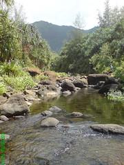 Na Pali Coast, Kaua'i, Hawaii (Nicolas-Frdric) Tags: hawaii kauai napalicoast