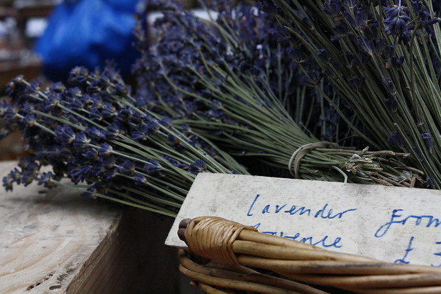 wood uk plant flower macro london sign wooden dof basket purple market unitedkingdom label lavender case southbank depthoffield boroughmarket borough provence bundle aromatic herb