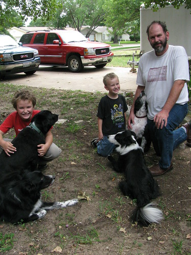 Border Collies and Boys