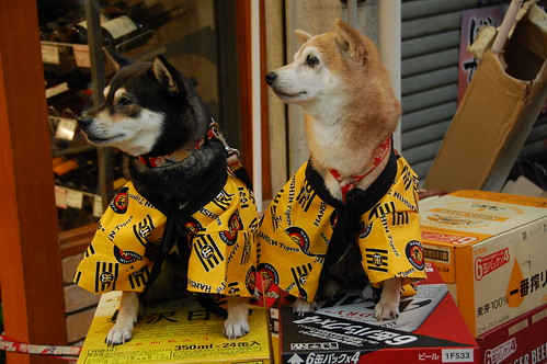 Hanshin Tigers and beer dogs