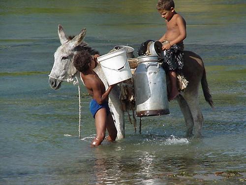 Niños cargando agua