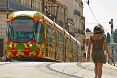 Les trams de Montpellier (Tramway) (jeanmichelchuiche) Tags: 2 france fleurs jaune rouge tram carousel vert bleu rails tramway tam languedoc sabines wattman conducteur hérault cinqcaisses bariolé contreplongé