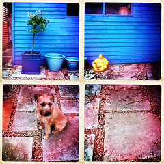 Bobby and Buddha (ddoran) Tags: photographs photomontage joiner photostitch joiners cubistphotography ddoran