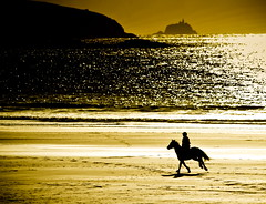 Seaside canter (Sian Bowi) Tags: sea horse sun beach wales sand whitesands rider pembrokeshire canter sirbenfro traethmawr goldstaraward photosensation