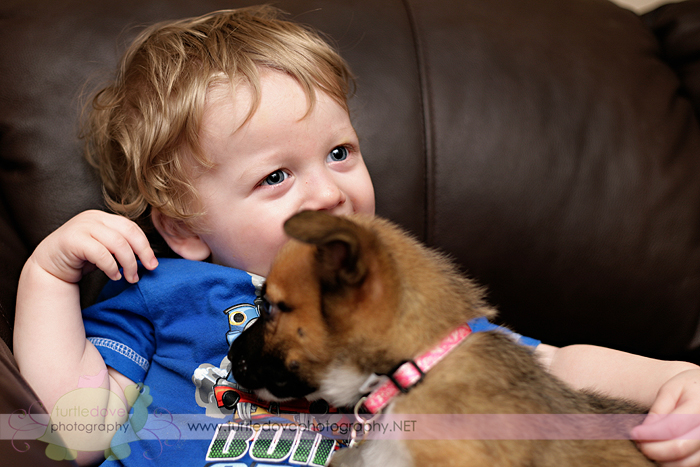 This puppy LOVES him