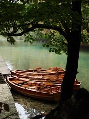 Plitvice Lakes National Park, Croatia (charsweb2) Tags: lakes plitvice bestof2007 onlinegallery