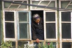 gegenber..  /    opposite.. (Majanne) Tags: fenster tibet lhasa