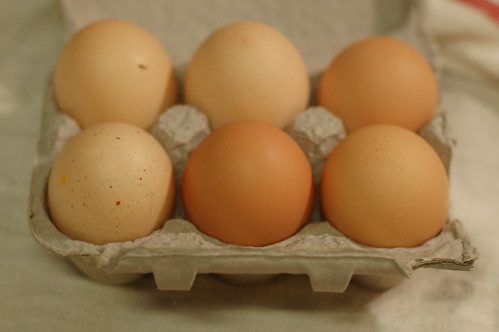 Pasture-raised eggs from Eatwell Farms by Eve Fox, garden of eating blog