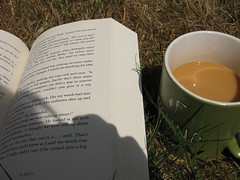 {twilight} (Perpetual*Bliss) Tags: summer cup twilight backyard tea books stephanie mornings meyers