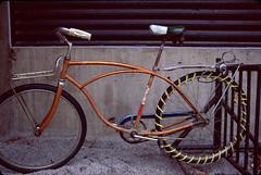 Schwinn Gold Bike Snow Tire (pineconemonk) Tags: boy copyright snow news bike digital vintage gold vermont tire front millennium rack copper 70s schwinn ever coolest act typhoon pimped frankenstien dmca
