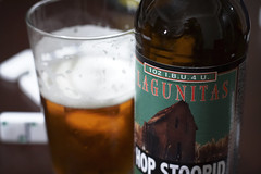 52 Beers Group, Week 31: Lagunitas Hop Stoopid Ale