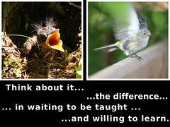 Waiting to be Taught versus Willing to L by langwitches, on Flickr