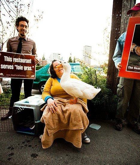 foie gras protest